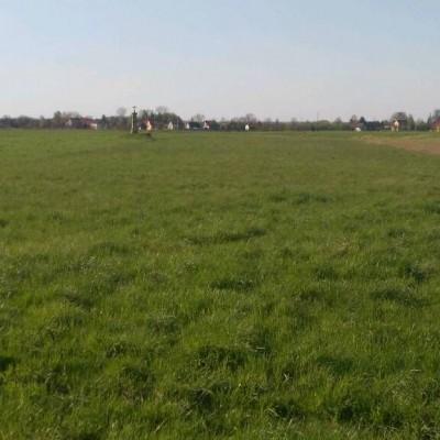 Kapliczka w polach...